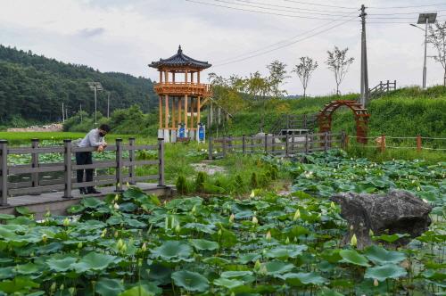 영주시, 마을만들기사업 활기…마을 경관 새롭게 단장