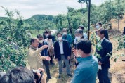 영주시, 이상저온 피해농가 복구비 '57억5400만원 지원'