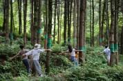 산림치유원, 사회복지사 대상 번아웃 극복 프로그램