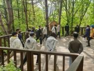 코로나 대응 의료진, 숲에서 활력을 찾다